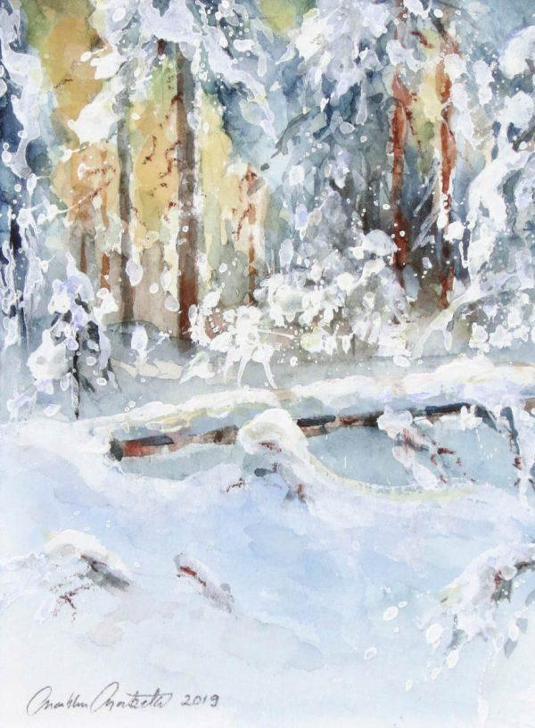 Talvimetsan tunnelmaa